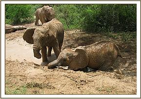 Chyulu & Sian playing in mud