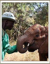 Murera and one of her keepers