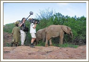 BBC filming ithumba unit for Elephant Diaries 2