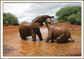 Siria left & Mzima wrestling in the water