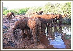 Orphans having a drink of water in the morning