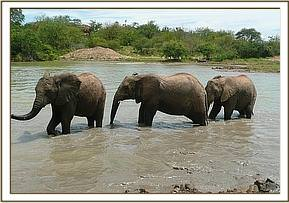 Makena, Lenana and Chyulu in the water