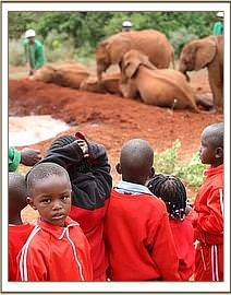 Every day Kenyan School children see the orphans
