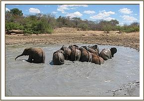 Orphans enjoying the mudbath