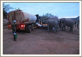 Bowser filling water for elephants