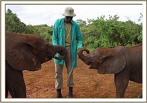 Keeper Sundry with two of the Nursery orphans