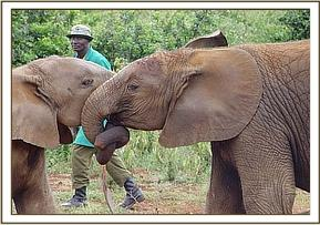 Buchuma & his friend Ndomot play fighting