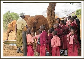 Pupils visiting the eles at the stockade
