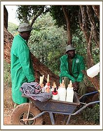 Keepers with the orphans milk