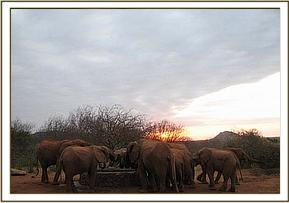 Orphans having a drink in the early morning