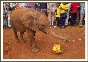 Ashaka trying to play soccer