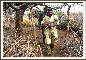 The baby kudu is taken by a DSWT keeper