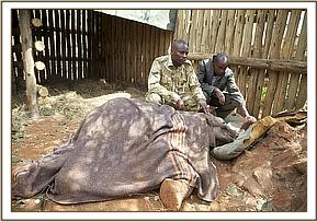 Narok with one of his rescuers