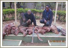 Arrested poachers with bushmeat at Maktau area