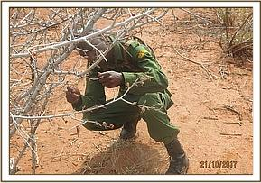 Team member lifting a snare at Tiva area