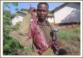 One of the poachers in posession of Dikdik meat