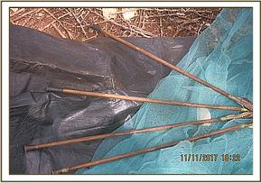 Arrows recovered from poachers hideout