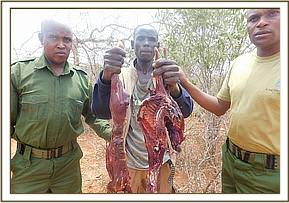 A bushmeat poacher arrested by the team