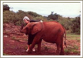 Dr. Daphne Sheldrick with Olmeg