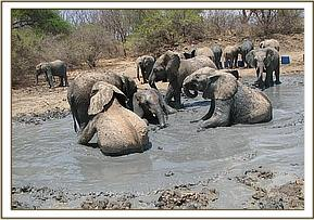 orphans playing at the mud bath