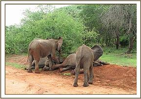 Galana and her group plays with wet soil