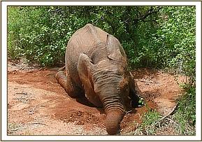 Chyulu playing in the soil
